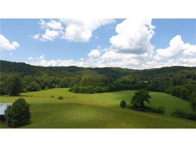 Ellijay GA Single Family Home For Sale: $1,495,000