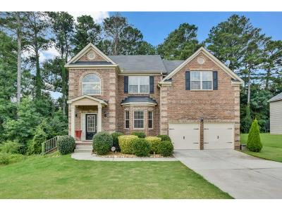 Snellville Single Family Home For Sale: 3290 Terry Ashley Lane