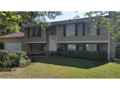 Marietta Single Family Home For Sale: 2582 Morgan Lake Drive NE