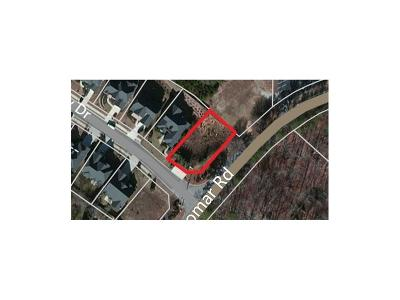 Douglas County Residential Lots & Land For Sale: 3010 Olde Tabby Drive