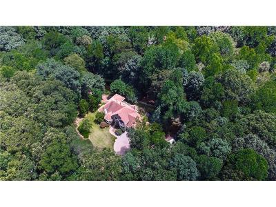 Alpharetta Single Family Home For Sale: 13525 Willowbank Lane