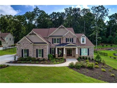 Forsyth County Single Family Home For Sale: 5925 Windjammer Point