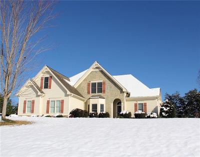 Dawsonville Single Family Home For Sale: 478 Morgan Lane
