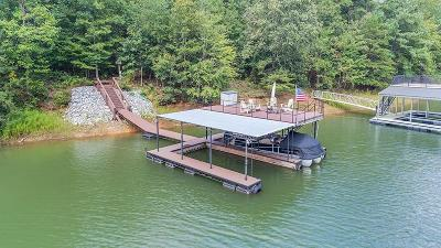 Forsyth County, Gwinnett County Single Family Home For Sale: 9105 Ivyshaw Landing