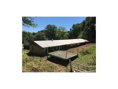 Single Family Home For Sale: 1215 Center Street SW