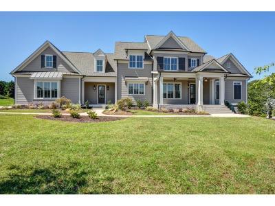 Canton Single Family Home For Sale: 203 Trinity Way