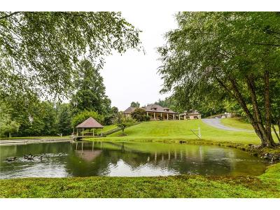 Dawsonville Single Family Home For Sale: 839 Fausetts Lake Road