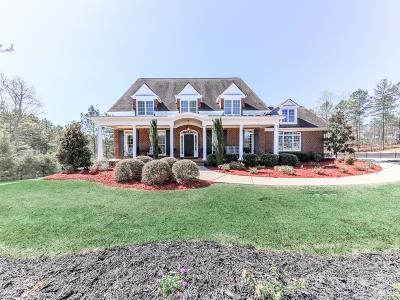 Canton Single Family Home For Sale: 2089 Harmony Drive