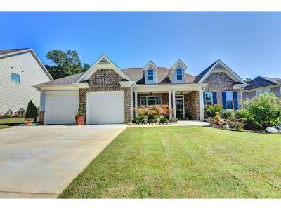 Braselton Single Family Home For Sale: 232 Bakers Farm Circle
