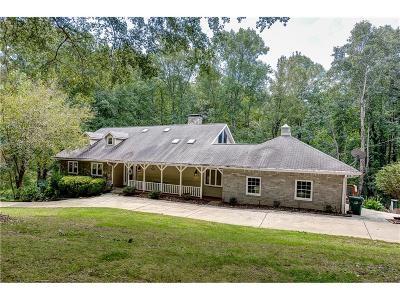 Smyrna Single Family Home For Sale: 4132 Manson Avenue SE