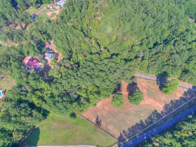 Alpharetta Single Family Home For Sale: 221 Dogwood Lake Trail
