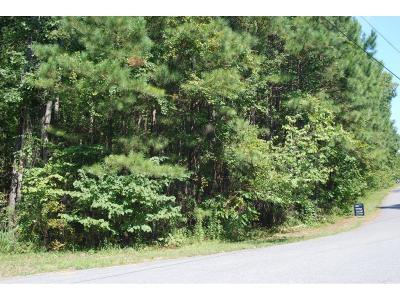 Paulding County Residential Lots & Land For Sale: 394 Oak Hills Drive