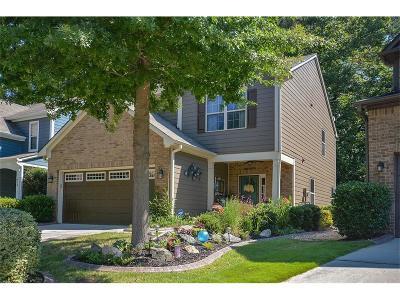 Acworth Single Family Home For Sale: 916 Silver Lake Drive