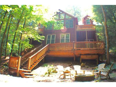 Ellijay Single Family Home For Sale: 421 Dobsons View Road
