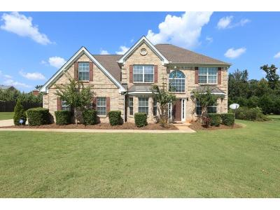 McDonough Single Family Home For Sale: 144 Sunflower Meadows Drive