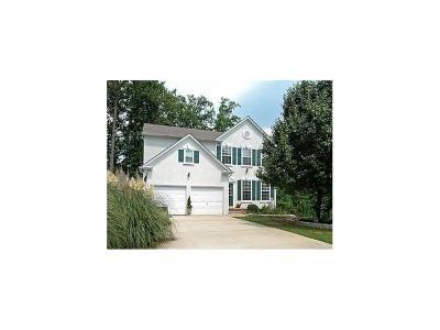 Duluth Single Family Home For Sale: 3162 Davenport Park Lane