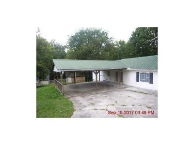 Carroll County, Coweta County, Douglas County, Haralson County, Heard County, Paulding County Single Family Home For Sale: 4183 Georgia Highway 120