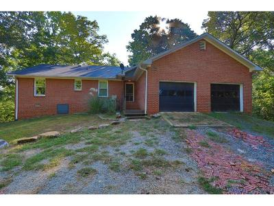 Woodstock Single Family Home For Sale: 618 Silver Trace Court