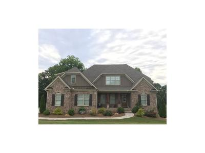 Canton Single Family Home For Sale: 302 Towne Overlook Circle