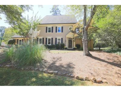 Johns Creek Single Family Home For Sale: 9260 Waits Ferry Crossing