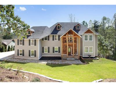 Dawsonville Single Family Home For Sale: 287 Moss Overlook Road