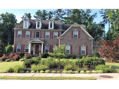 Kennesaw Single Family Home For Sale: 1150 Bagwell Drive NW