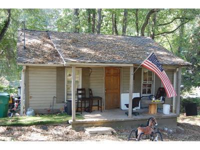 Canton Single Family Home For Sale: 100 Daisy Circle