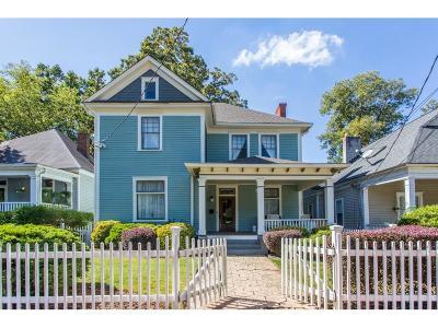 Single Family Home For Sale: 441 Park Avenue SE