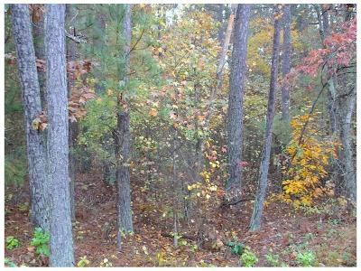 Carroll County Residential Lots & Land For Sale: 5215 Woodmont Drive