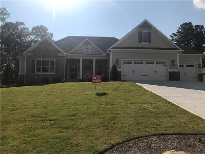 Forsyth County Single Family Home For Sale: 8810 Port View Drive