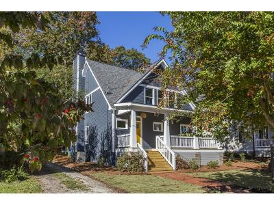Single Family Home For Sale: 450 Candler Park Drive NE