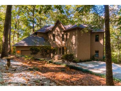 Roswell Single Family Home For Sale: 135 Skyland Drive