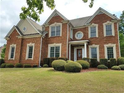 Buford Single Family Home For Sale: 3856 Creekview Ridge Drive