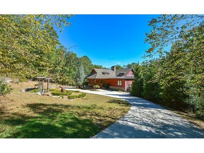 Lake Arrowhead Single Family Home For Sale: 109 Lakewood Drive