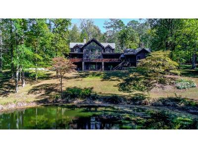 Fulton County Single Family Home For Sale: 8900 Island Ferry Road