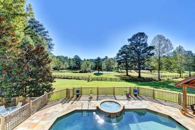 Suwanee Single Family Home For Sale: 1004 Mill Creek Run