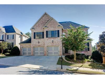 Smyrna Single Family Home For Sale: 4542 Oak Brook Drive SE