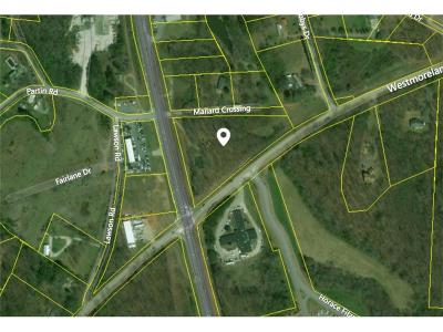 Commercial For Sale: Highway 129
