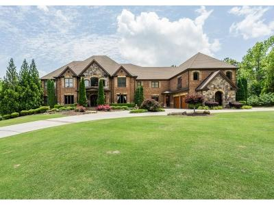 Gwinnett County Single Family Home For Sale: 1855 Kathy Whitworth Drive