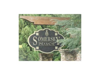 Paulding County Residential Lots & Land For Sale: 20 Somersby Drive