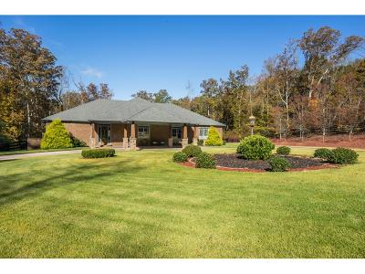 Dawsonville Single Family Home For Sale: 4932 Auraria Road