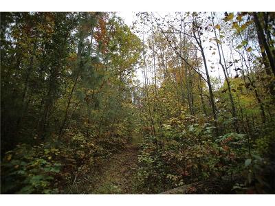 Paulding County Residential Lots & Land For Sale: Lot 2 Smokey Path