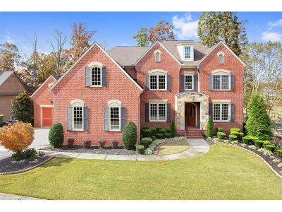 Canton Single Family Home For Sale: 193 Grandmar Chase