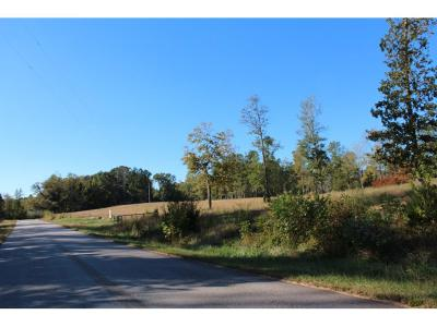 Land/Farm For Sale: 5519 S Black Road Tract 1