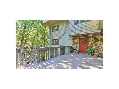 Pickens County Single Family Home For Sale: 172 Little Hendricks Mountain