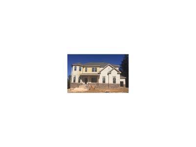 Canton Single Family Home For Sale: 2076 Harmony Drive