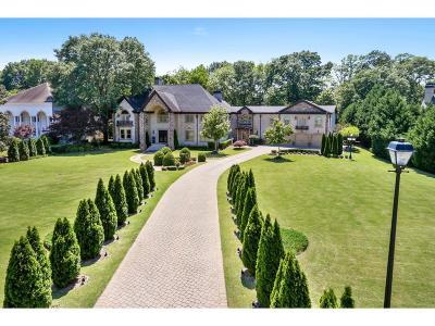 Johns Creek Single Family Home For Sale: 5315 Chelsen Wood Drive