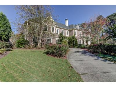 Sandy Springs Single Family Home For Sale: 260 Trimble Crest Drive