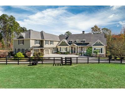 Alpharetta Single Family Home For Sale: 16289 Clarity Road
