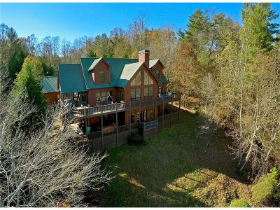 Ellijay Single Family Home For Sale: 25 River Oaks Trail